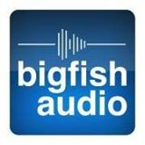 Big Fish Audio Coupon Codes
