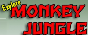 monkeyjungle.com